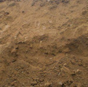 ทรายถม,ทรายขี้เป็ด (คิว)